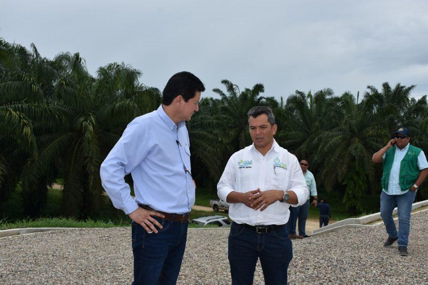 Director de Corpocesar visita plantación de Palmas del Cesar