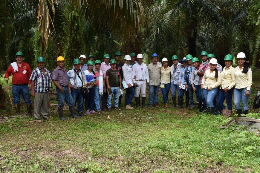 Proveedores de fruto comparten experiencias sobre la norma RSPO en un día de campo