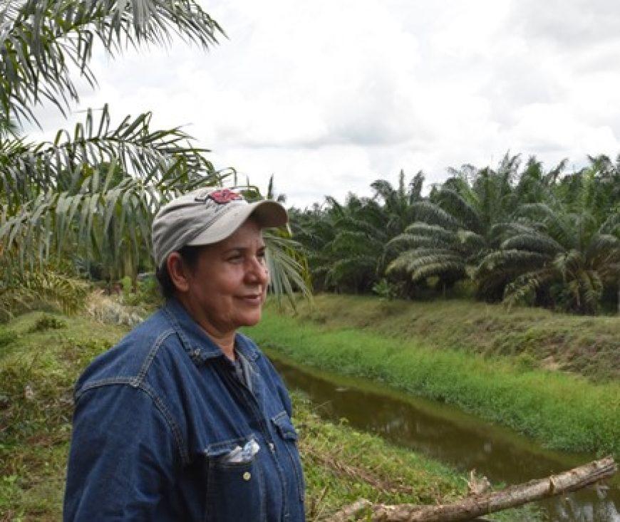 Proveedora de fruto de Palmas del Cesar es finalista en el concurso Mujer Palmera Campesina 2018