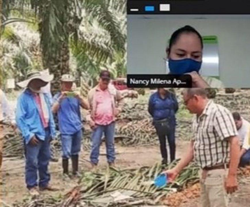 """""""Fertilizar sí paga"""". Primer taller virtual de capacitación para los proveedores de RFF"""